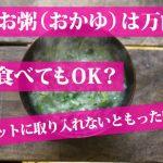 お粥(おかゆ)はダイエットに最適!5キロは痩せられる?レシピ5選!